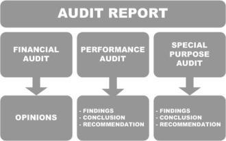 audit-chart.jpg